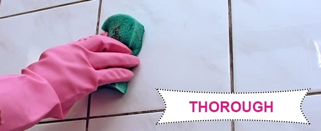 Cleaning-Services-Throrough-Scrubbing