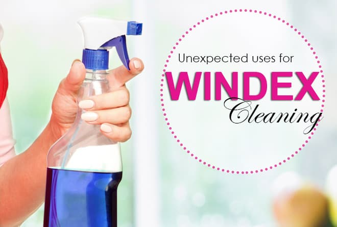 21 Unusual Uses for Windex, And a Few Fun Extras…